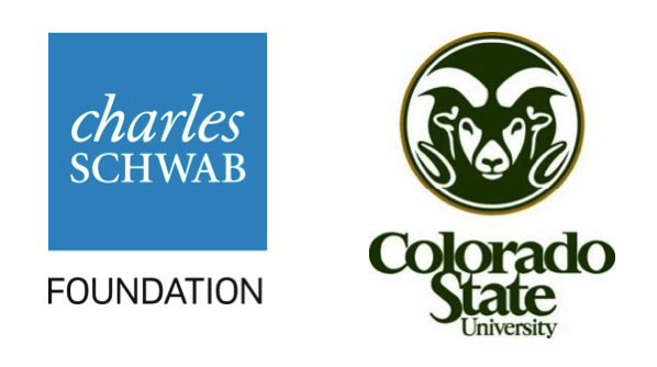 Charles Schwab Foundation Logo